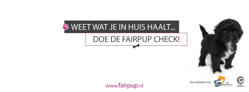 Doe de Fair Pup check
